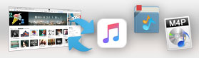 Apple Music Converter Tips